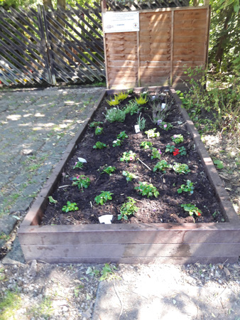 new flower bed